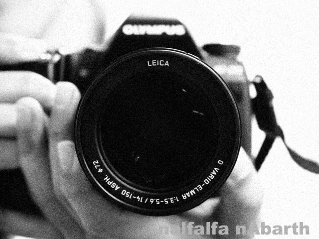 P9153756.jpg